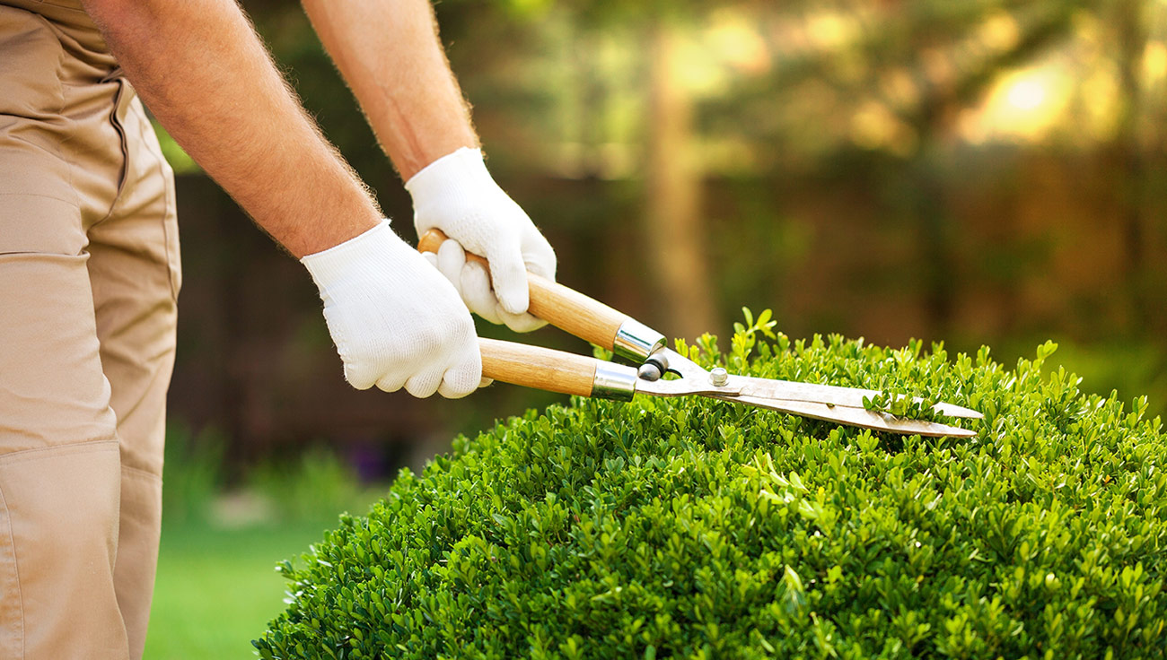 Limpieza de mantenimiento, limpiezas de fabricas